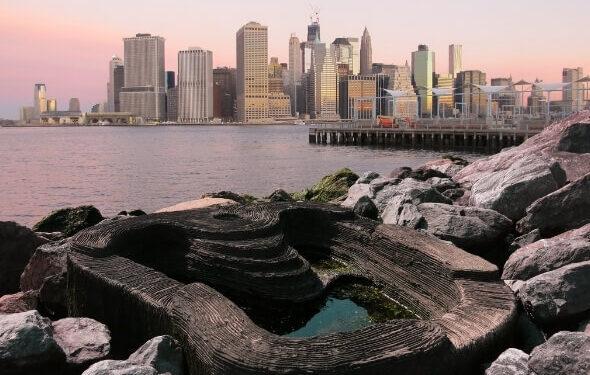 Brooklyn-Bridge-Park_590-399-1-aspect-ratio-590-375