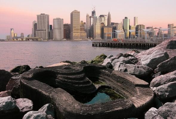 Brooklyn Bridge Park_590 399 (1)